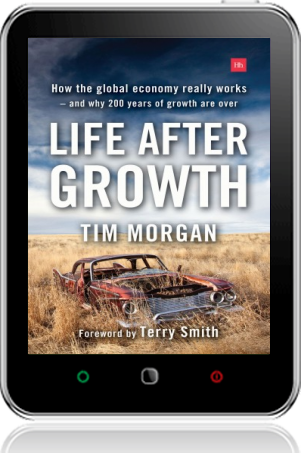 Cover of Life After Growth (Tablet)